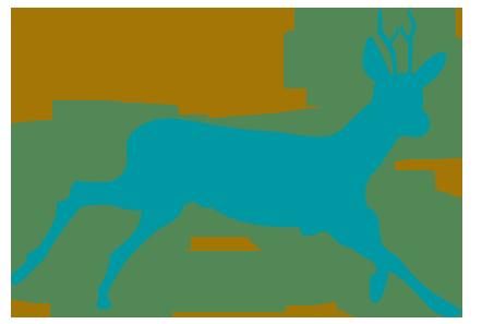 especie